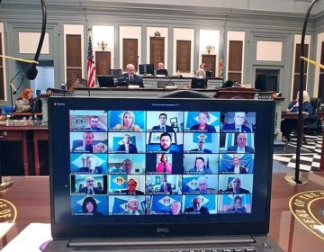 Delaware State Representatives met for the first time in history via a virtual session on Tuesday. (courtesy House Democratic Caucus)