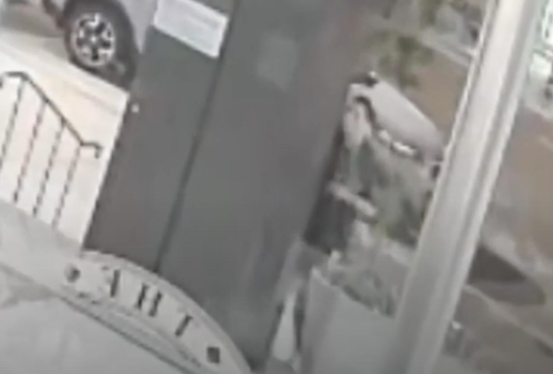 Alleged suspect in string of anti-Semitic vandalism