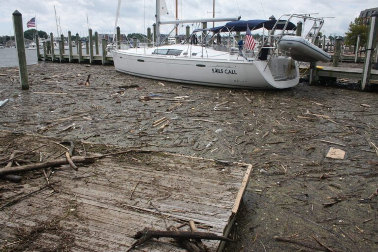 Chesapeake Bay pollution