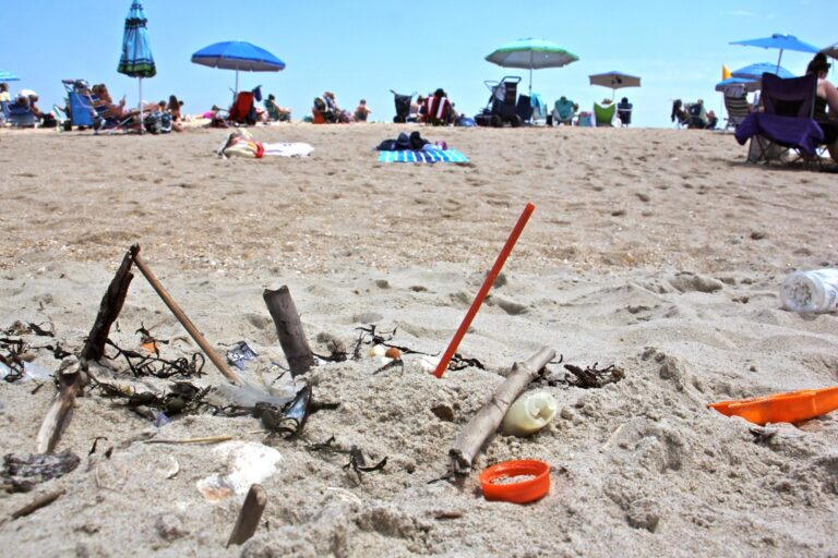 Plastic trash is deposited at the high tide line at Monmouth Beach, New Jersey. A new local law prohibiting merchants from using plastic straws, styrofoam food containers, and plastic bags is a small step in the right direction, supporters say. (Emma Lee / WHYY)