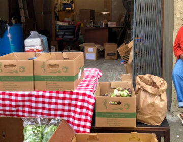 Groceries outside the Germantown Mutual Aid