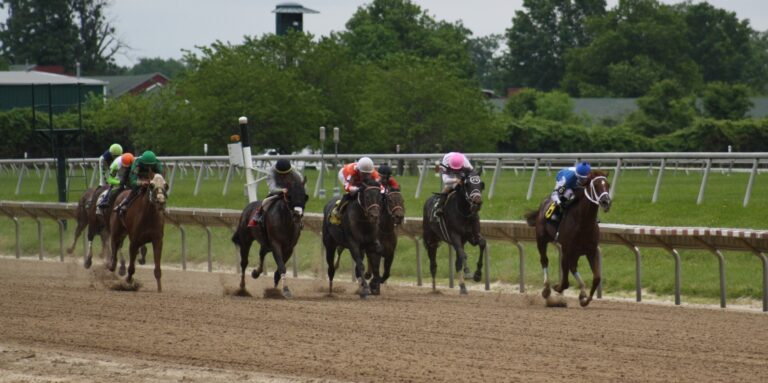 The field of horses races down the front stretch on opening day at Delaware Park in Stanton, Delaware. (Mark Eichmann/WHYY)