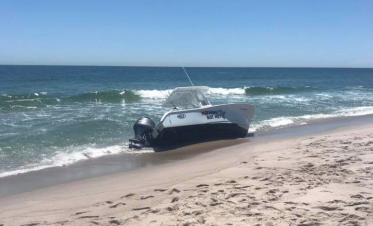 A boat on the shoreline in Seaside Park are colliding with a whale Monday morning. (Image courtesy of Friends of Seaside Park via Facebook)