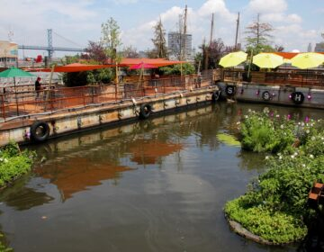 The Water Garden at Spruce Street Harbor Park offers socially distant dining for up to 125 people. Reservations are required and guests are limited to a two-hour stay. (Emma Lee/WHYY)
