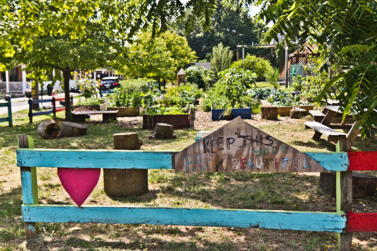 The garden at the North Philly Peace Park. (Kimberly Paynter/WHYY)