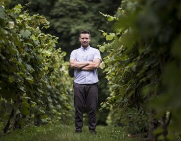 Jonas Nissley of Nissley Vineyards. July 16, 2020 (Sean Simmers / PennLive)
