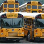 Rows of school buses