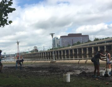 Volunteers helped clean up a mess of debris and mud left on the Schuylkill Bank post-Tropical Storm Isaias. (Katie Meyer/WHYY)