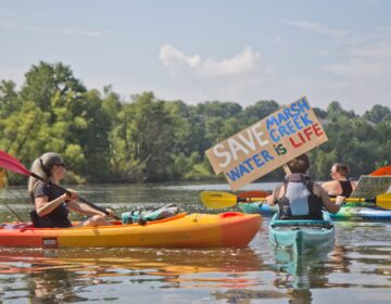 Protesters of Sunoco's Mariner East Pipline kayaked to a clean-up site on Marsh Creek Lake in Chester County, Pa., where an estimated 8,000 gallons of drilling mud migrated into the waterways. (Kimberly Paynter / WHYY)