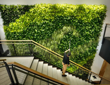Architects say making the office more like the outdoors — with filtered air and good ventilation — will be a priority post-pandemic. This living wall in the Danielle N. Ripich Commons at the University of New England in Biddeford, Maine, is one such approach. (Gregory Rec/Portland Press Herald via Getty Images)