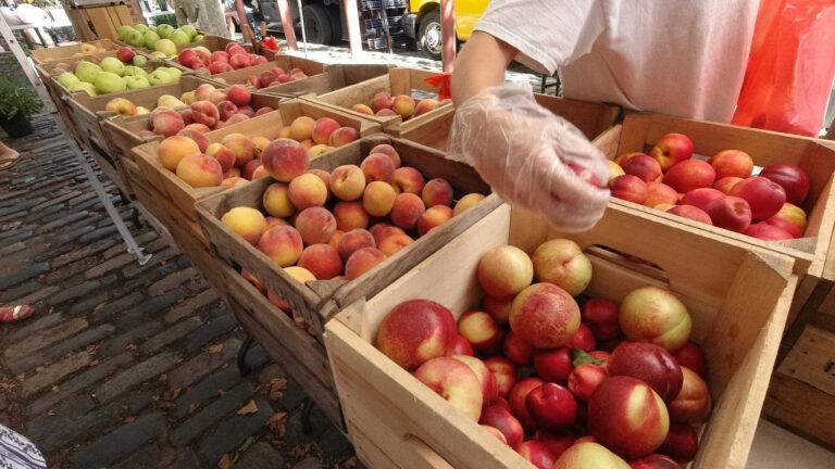 Apples at a farmers market