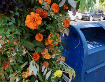 A mailbox decorated with orange flowers