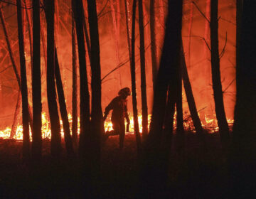A firefighter is silhouetted against a fire burning outside the village of Roqueiro