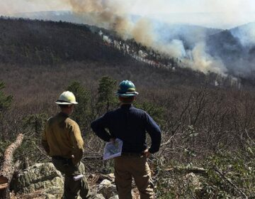 Pennsylvania prescribed wildfire burn