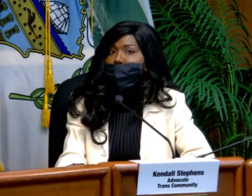 Kendall Stephens testifies in front of the Pa. Senate Majority Policy Committee in October 2020. (Pa. Senate Policy Committee)