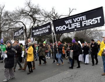Anti-abortion-rights activists participate in the March for Life rally near the Supreme Court in Washington, D.C., on Jan. 24. (Susan Walsh/AP Photo)