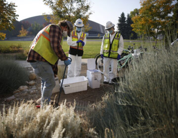Researchers collect samples in Fort Collins