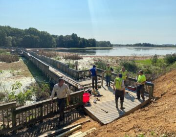 A team at the Heinz National Wildlife Refuge restoring 'the water control structure.' (Courtesy of the John Heinz National Wildlife Refuge at Tinicum)