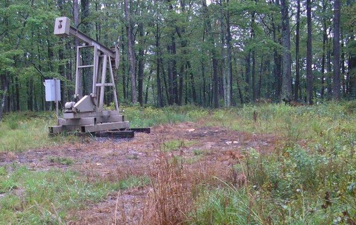 Dead vegetation around a conventional well indicating a possible brine spill. (Courtesy of Pennsylvania DEP)