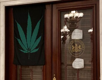 A marijuana leaf flag hangs on the door of Lt. Gov. John Fetterman's office on Sept. 21, 2020. (Sam Dunklau / WITF)