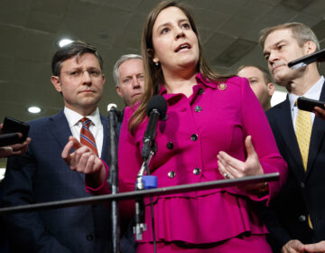 Rep. Elise Stefanik, R-N.Y., took it upon herself to help boost women's numbers in a party dominated by white men. (Jacquelyn Martin/AP Photo)
