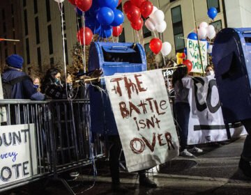 Dancing mail boxes were present at a rally in Philadelphia demanding the count of every vote in Pa. (Kimberly Paynter/WHYY)