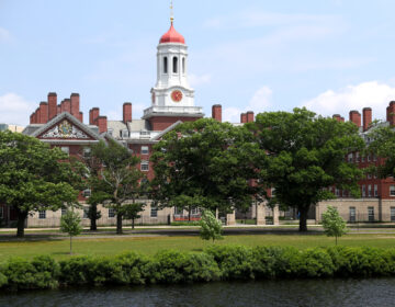 A panel of judges Thursday found that Harvard, pictured here in July, doesn't discriminate against Asian American students in the admissions process. (Maddie Meyer/Getty Images)