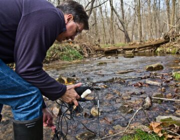John Jackson, senior research scientist at the Stroud Water Research Center, measure conductivity in the White Clay Creek stream. (Kimberly Paynter/WHYY)