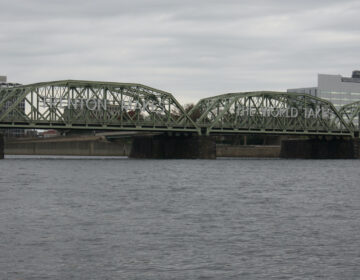 The Lower Trenton Bridge