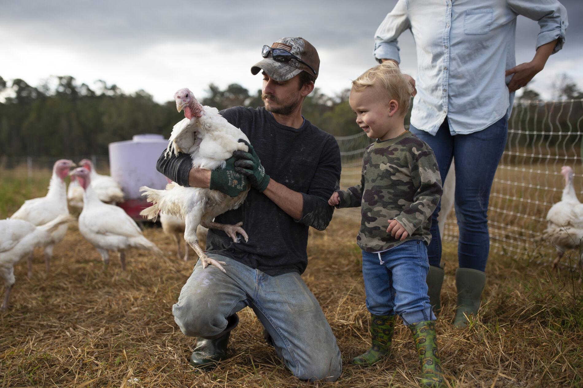 """Joe Shenk holds a turkey for his son, Mason, to pet in the open-air enclosure on their farm. """"They're not very smart, but they make up for that by being really friendly and interesting,"""" Shenk said about the turkeys."""