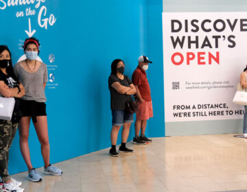 In this June 29, 2020, customers waited in line to enter a store at Garden State Plaza in Paramus, New Jersey. (Seth Wenig/AP Photo)