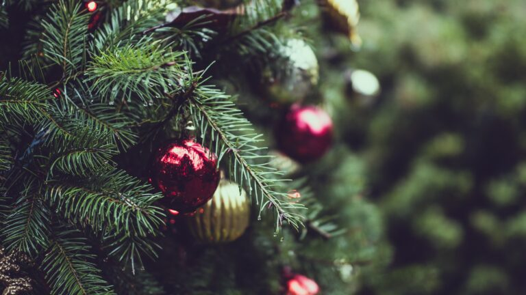 Ornaments are pictured close-up on a Christmas tree