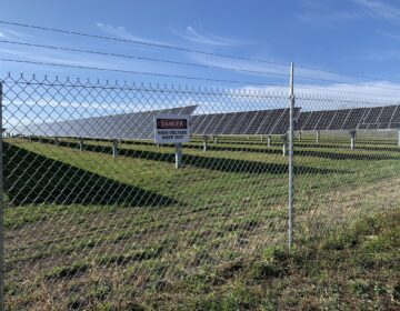 The Nittany 1 Solar Farm, seen here from outside protective fencing in Lurgan Township, Franklin County on Nov. 24, 2020. (Rachel McDevitt/StateImpact Pennsylvania)