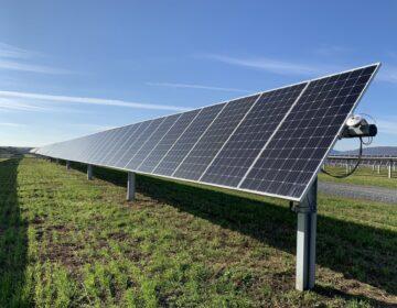 A solar array at the Nittany 1 Solar Farm is seen here in Lurgan Township, Franklin County on Nov. 24, 2020. (Rachel McDevitt/StateImpact Pennsylvania)