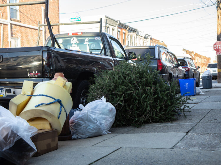 Christmas trees put out in the trash in Philadelphia's Port Richmond neighborhood. (Kimberly Paynter/WHYY)