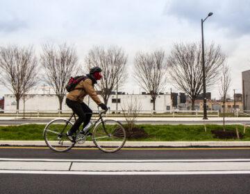 A biker uses the raised bike lanes on American Street.
