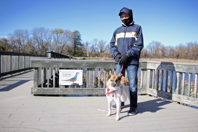 Leonard Stewart, 75, of Eastwick, walks with his dog, Princess, on the boardwalk at the John Heinz National Wildlife Refuge at Tinicum. (Emma Lee/WHYY)