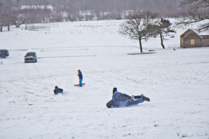 Residents sled in Fairmount Park