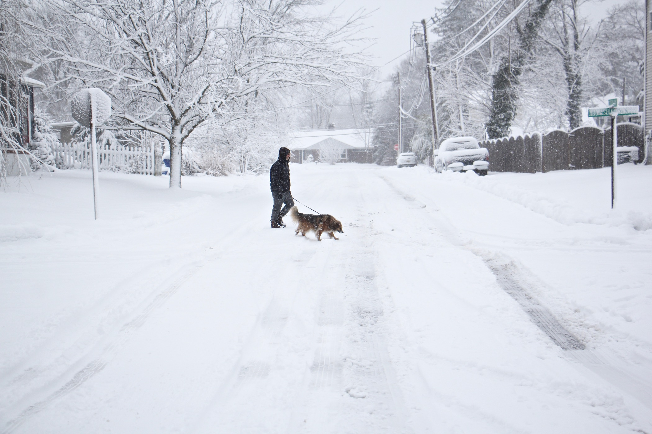A man takes an early morning walk with his dog on an unplowed street in Moorestown, N.J.