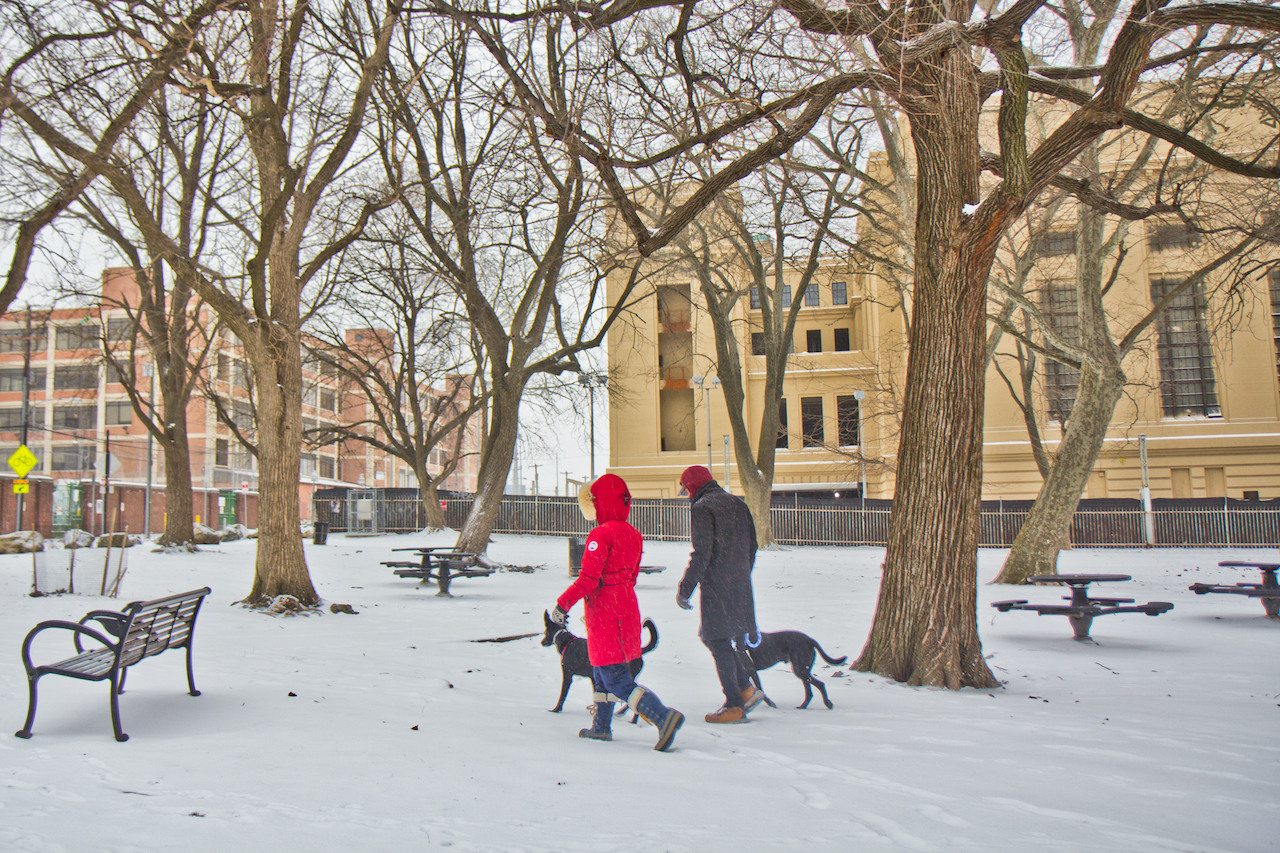 Two pups and their humans take a snowy walk at Penn Treaty Park