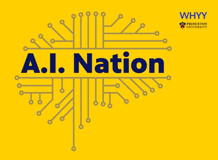 AI Nation
