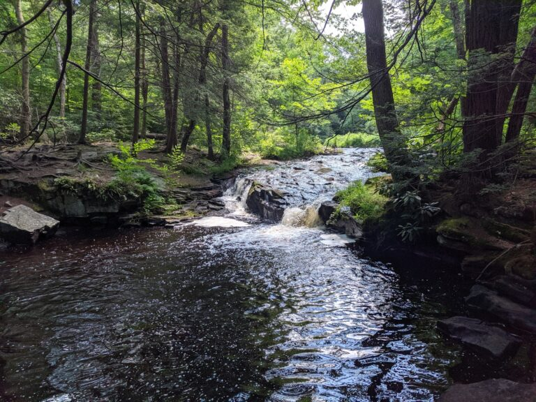 The east branch of Wallenpaupack Creek runs through Promised Land State Park in Pike County. (Rachel McDevitt/StateImpact Pennsylvania)