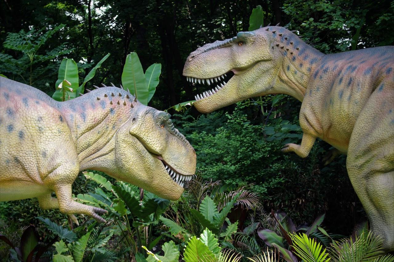 A pair of animatronic T-Rexes