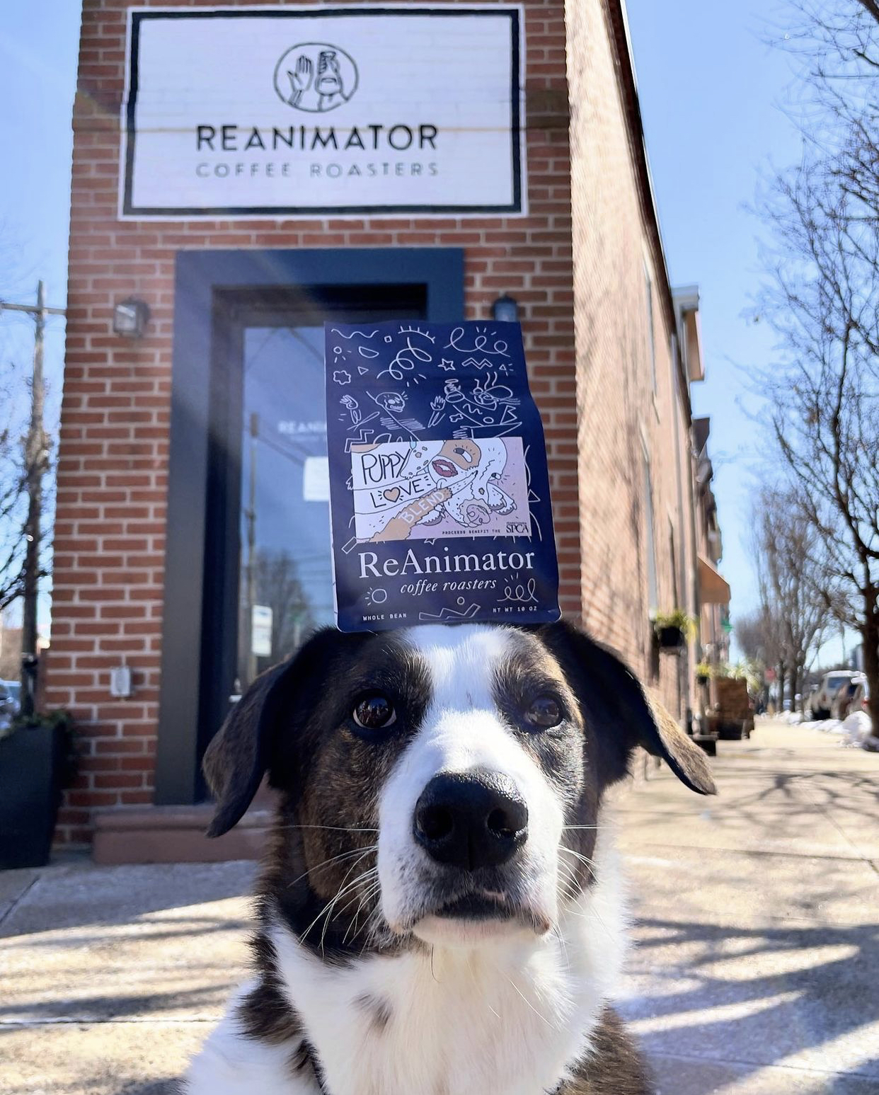 A Very Good Boy shows off Reanimator's special edition Puppy Love blend.