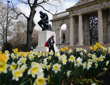 A pedestrian holding a face mask walks by daffodils blooming