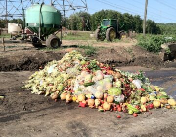 A pile of food is pictured on a farm