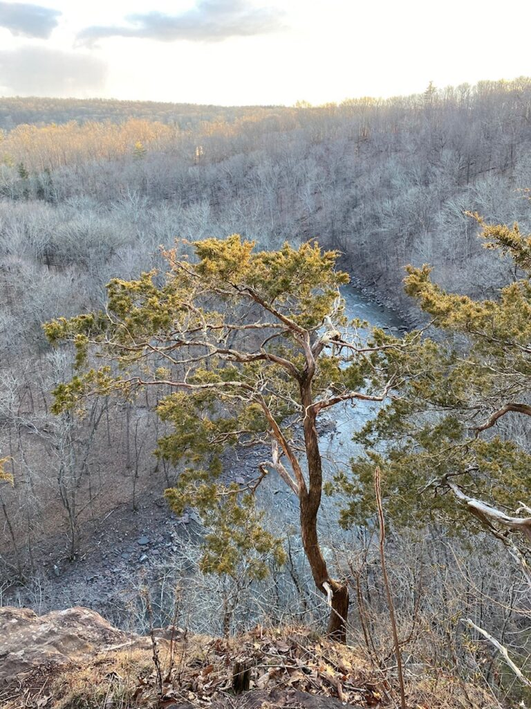 Tohickon Creek in Bucks County seen from up above