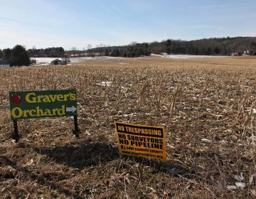 The proposed PennEast pipeline would pass through the fields of the Christman farm, seen from the intersection of Station Street and Pohopoco Drive in Lehighton. (Emma Lee/WHYY)