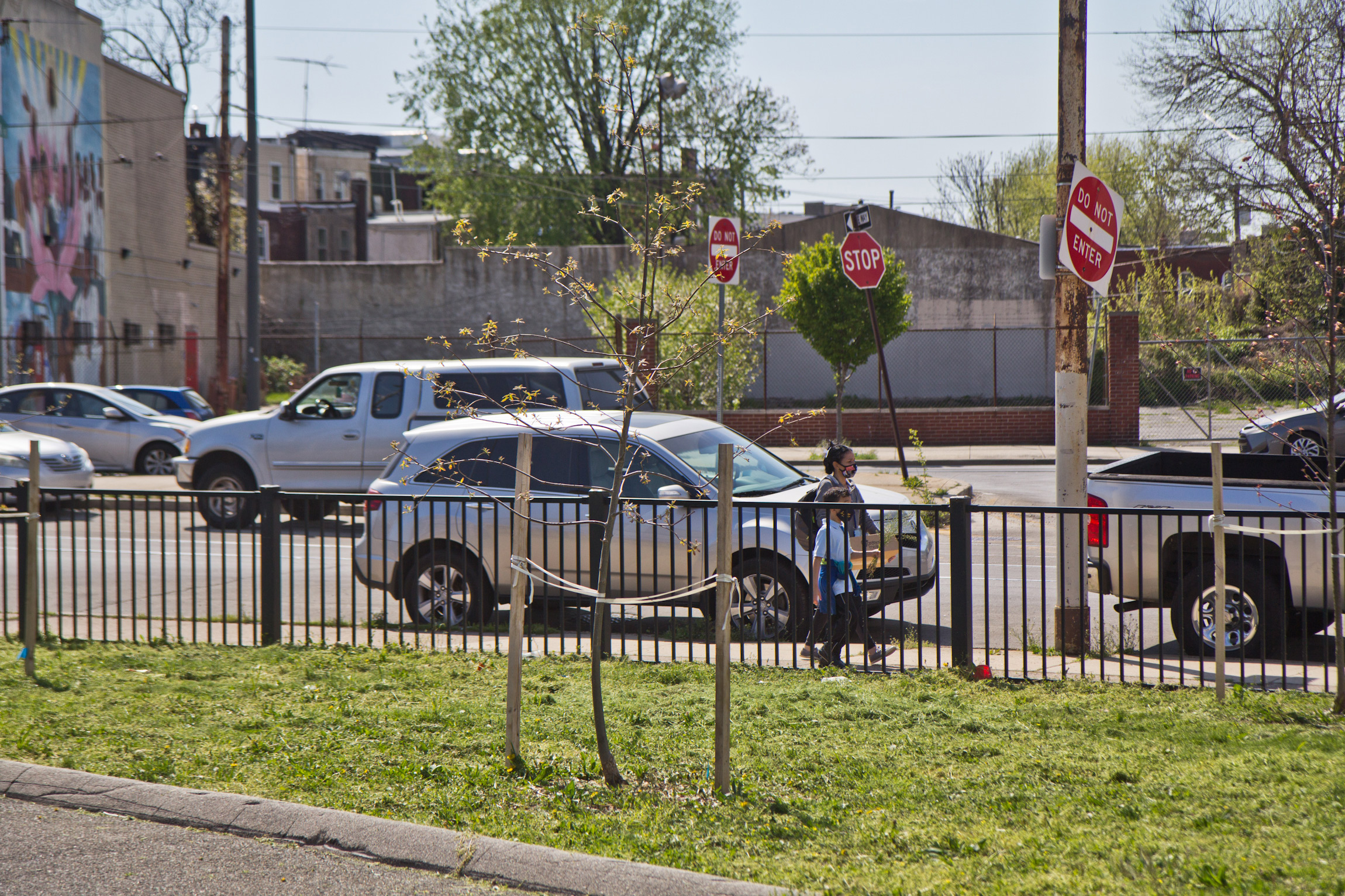 Trees were planted on the grass in front of Mary McLeod Bethune Elementary in the fall of 2020. (Kimberly Paynter/WHYY)