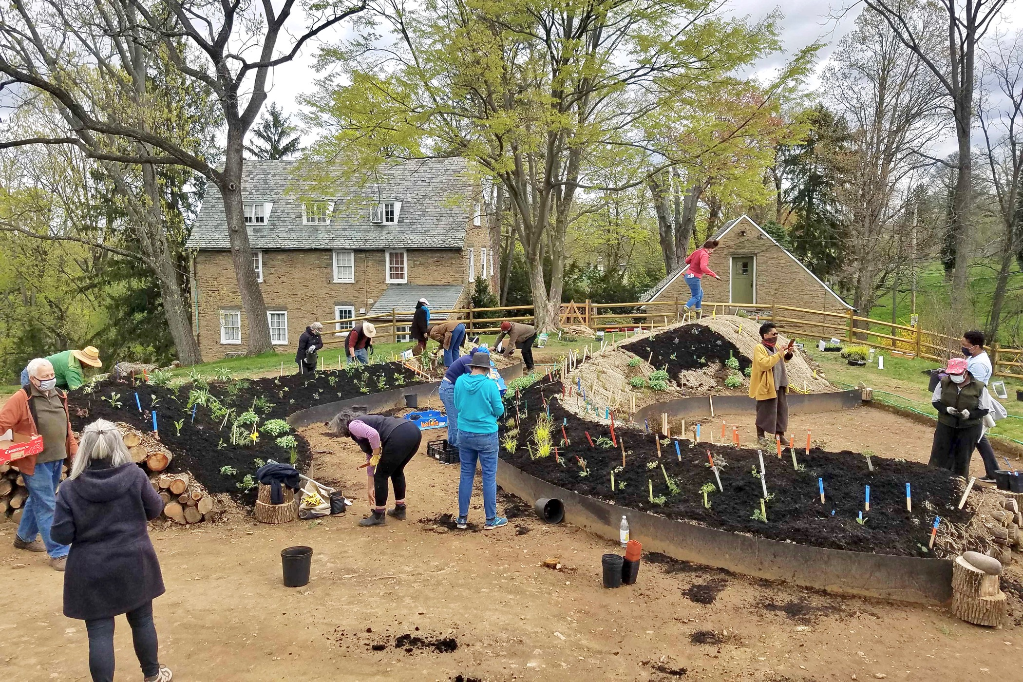 Volunteers plant hugel mounds on the grounds of the Woodmere Art Museum
